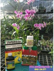 """""""Super four"""" bộ sản phẩm chăm sóc rễ cho cây trồng."""