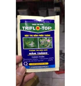 THUỐC ĐẶC TRỊ NẤM PHẤN TRẮNG VÀ NẤM BỒ HÓNG TRIFLO-TOP 750 WG