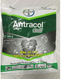 Antracol 100g